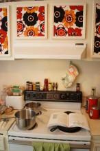 Honest Kitchen 2